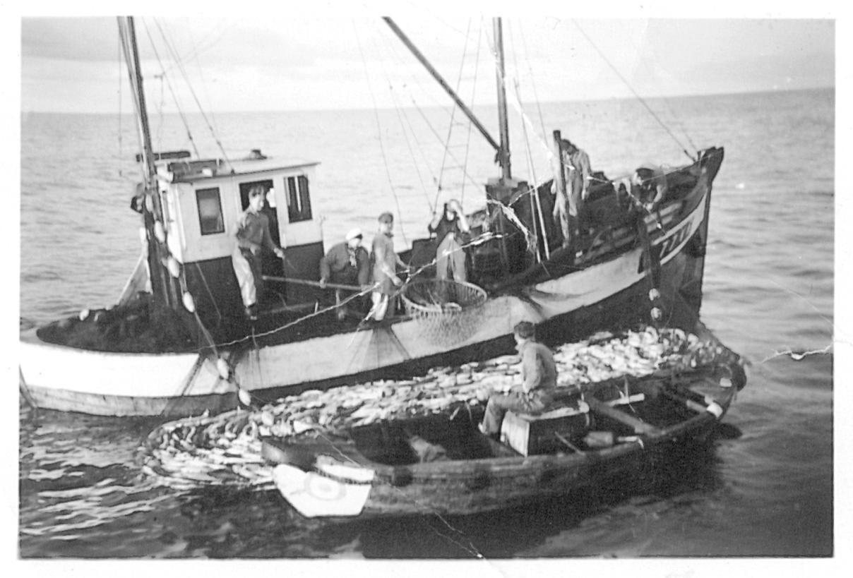 Seifiske ombord på Nystart en gang på 60-tallet